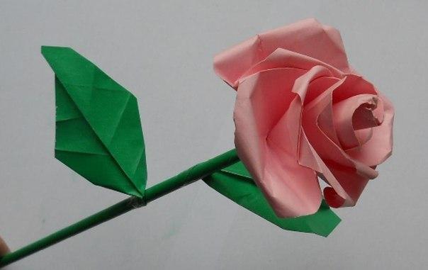 Papierrose Anleitung zum Basteln